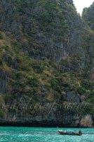 Green Phuket_DSC0359